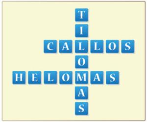 Helomas, Tilomas, Callos, Callosidades